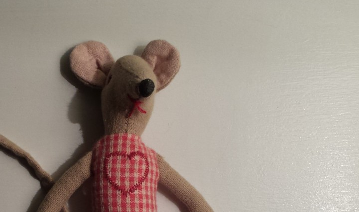 Stuffed animal mouse.