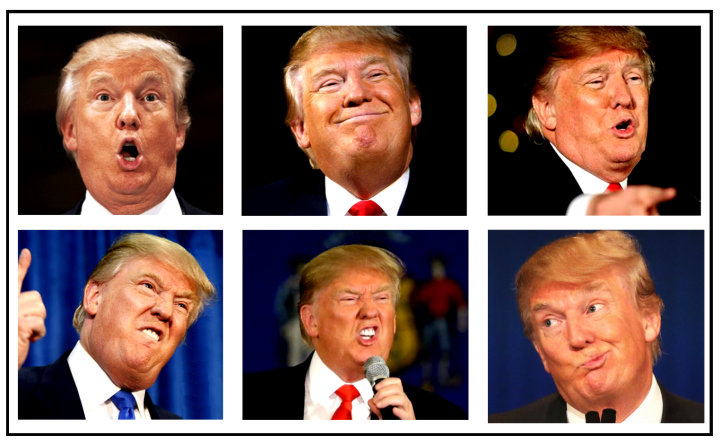 facesoftrump_cropped